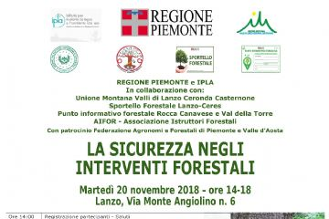 LA SICUREZZA NEGLI INTERVENTI FORESTALI
